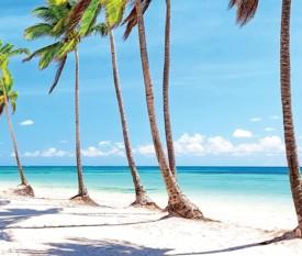 Mix Miami & Repubblica Dominicana