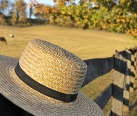 Minitour Philadelphia, Amish Country & Washington