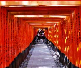 Tour Easy Tokyo & Kyoto