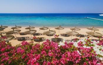 Villaggi Vacanze Sharm el Sheikh Veraclub Reef Oasis Beach Resort ...